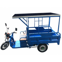 Solar panel powered tricycle