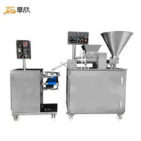 Fx-910 Automatic Soup Pack Machine