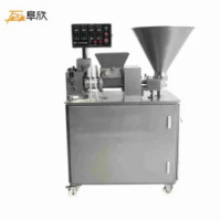 Fx-900 Automatic Dumpling Machine