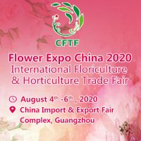 ( Flower Expo China 2020)