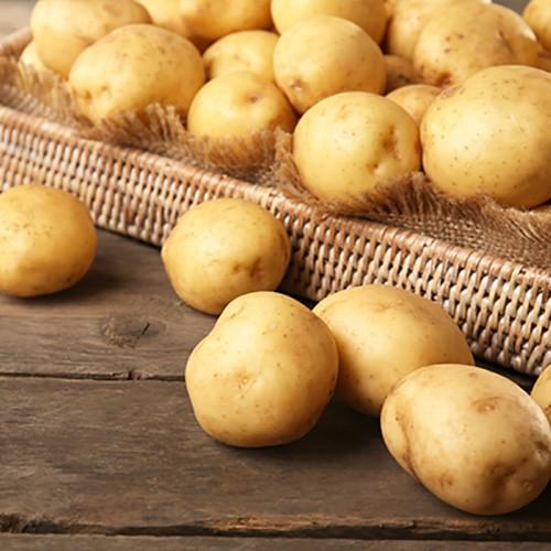 中国优质马铃薯